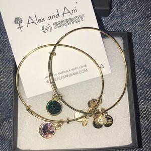 Alex and Ani Swarovski birthstone bracelets